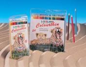 Lakeland Colourthin Pencil Packs with great savings! - 12 Pencil Set