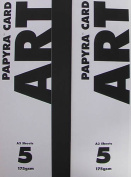 Papyra Art Card A3 - Classic White (175gsm) A3