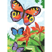 Royal Brush 324674 Mini Colour Pencil By Number Kit 5 in. x 7 in. -Bright Butterflies