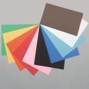 PAC103030 - Tru-Ray Construction Paper