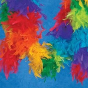Rainbow Feather Boa (6 Pcs) - Bulk [Toy]