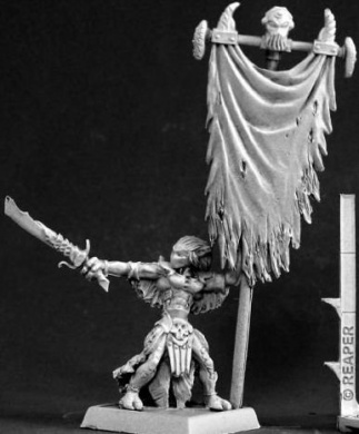 Darkspawn Standard Bearer Warlord Minature Figures by Reaper Miniatures