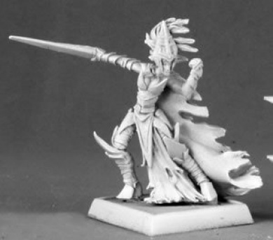 Female Dark Elf Warrior Warlord