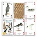 Sea and Coastal Birds Playing Cards