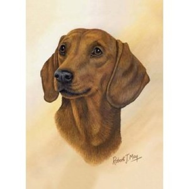 Dachshund Playing Cards - Art by Robert May