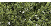 Fine Leaf Foliage, Light Green/75 cu. in.