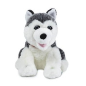 Smarty Ants Phonics Reading Pup Husky