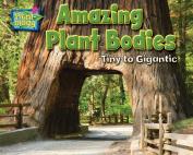Amazing Plant Bodies