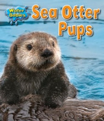 Sea Otter Pups (Water Babies)