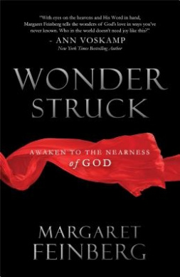 Wonderstruck: Awaken to the Marvel of God's Affection for You
