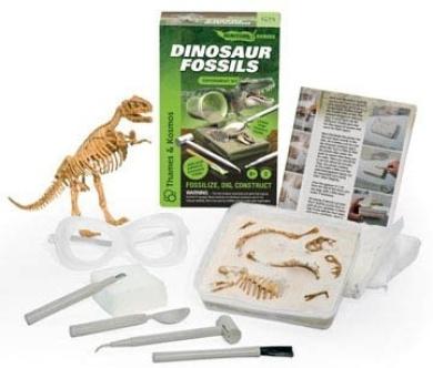 Dinosaur Fossils - Palaeontology Science Kit