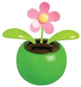Solar Powered Dancing Pinkflower; Green Science