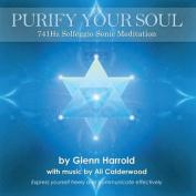 741Hz Solfeggio Sonic Meditation [Audio]