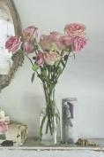Shabby Chic Roses Writing Set