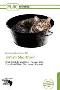 British Shorthair [FRE]