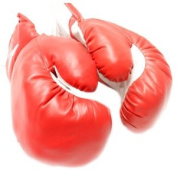 New 1 Pair of Youth Red 180ml Boxing Gloves For Kids