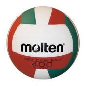 Molten Heavy Weight Volleyball