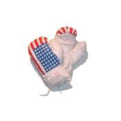 USA Flag Boxing Gloves Size Children's 180ml