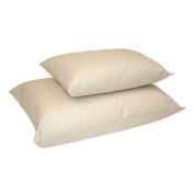 Naturepedic Organic Cotton/PLA Fill Standard Pillow