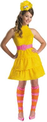 Sesame Street Big Bird Halloween Costume - Tween Size 14-16