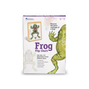 Learning Resources Frog Flip Chart