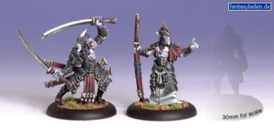 Circle Legion of Everblight: Blighted Swordsman Abbot and Champion (2)