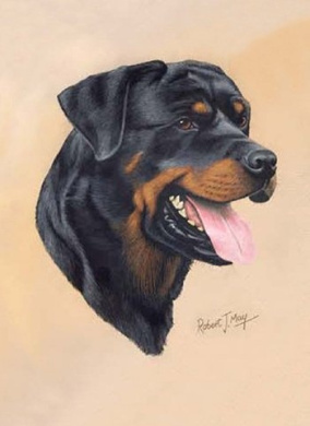 Rottweiler Rottie Playing Cards - Art by Robert May