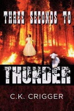 Three Seconds to Thunder