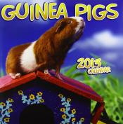 Guinea Pigs Wall: 2013