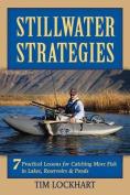 Stillwater Strategies