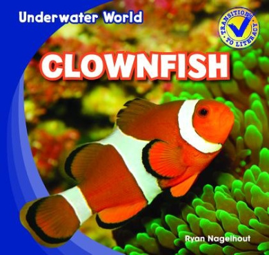 Clownfish (Underwater World)
