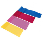 J Fit 20-1000 Exercise Bands - Set of 4