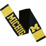 NCAA - Michigan Wolverines Jersey Scarf