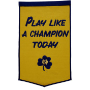 Notre Dame PLACT Banner