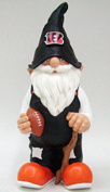 Team Gnome, Cincinnati Bengals