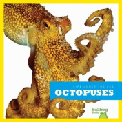 Life Under the Sea: Octopuses