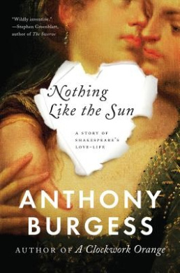Nothing Like the Sun: A Story of Shakespeare's Love-Life