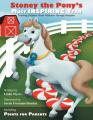Stoney the Pony's Most Inspiring Year
