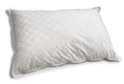 Down Etc. Aquaplush Polyester Standard Pillow, White