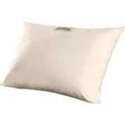 Natura Organic Cloud Pillow Size