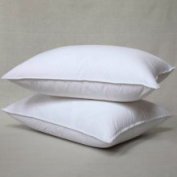 Downlite Suprelle Memory Fibre 425 Thread Count Pillow with Removable Cover