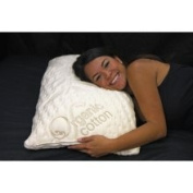 Integrity Bedding Ultra Plush Memory Foam Ventilated Pillow and Organic Cotton Cover Set