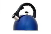 Evco International 72984 Satin Splendor Metallic Blue 2.8 Qt Tea Kettle