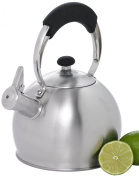 Creative Home Stovetop Teakettles Galaxy 10-Cup Tea Kettle in Stainless Steel Silver 72221
