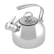 Chantal beautifulness tar clarinettist classical music stainless steel kettle 7197