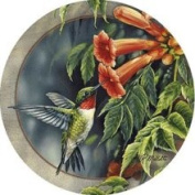 Thirstystone TSRM6 Natural Sandstone Coaster Set Hummingbird and Trumpet Vine