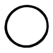 Chapin 1-2531-1 Viiton O-Ring