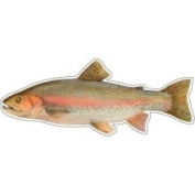 Signmission Rainbow Trout -fish Decal- Sticker Truck Fishing