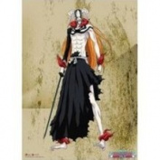 Bleach Wall Scroll Ichigo New Hollow Form Cloth Poster GE-5812