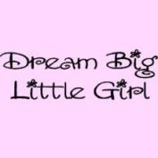 Wall Sayings Vinyl Lettering Dream Big Little Girl Vinyl Lettering Wall Sayings Art Decal Quote Sticker